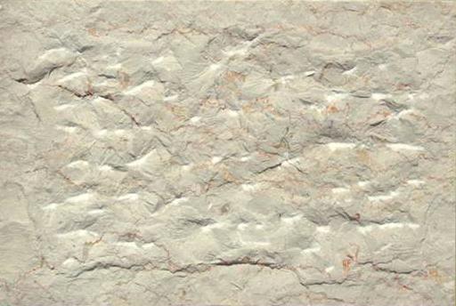 אבן טבעית בחיפוי הבית